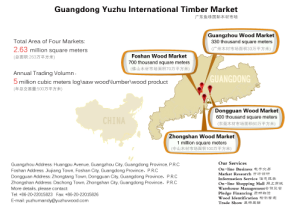 Guangdong Timber markets