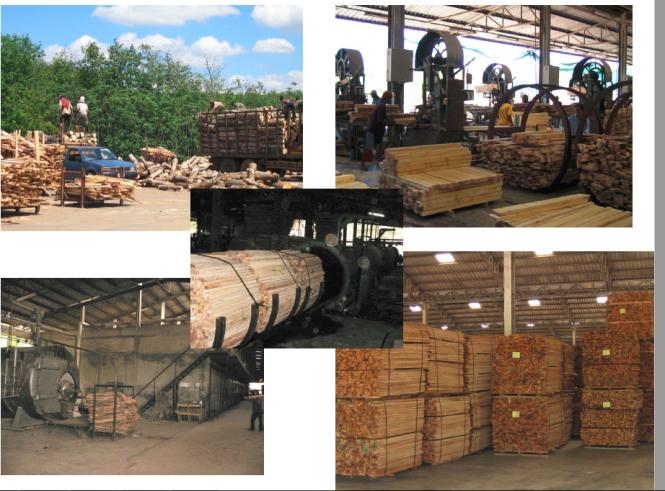malaysian rubberwood